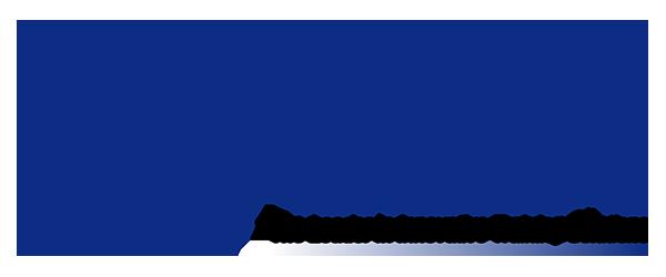 LSI company logo