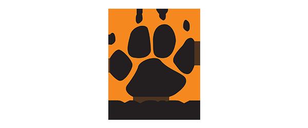 Bagira company logo